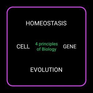 जिव विज्ञान के सिद्धांत, principles of Biology in hindi